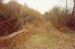 The old track bed at Dunkirk Mills before conversion to a cycle-walkway. 1982.